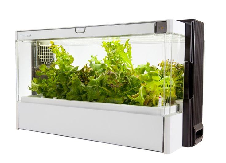 Green Farm: więcej niż szklarnia - PLN Design