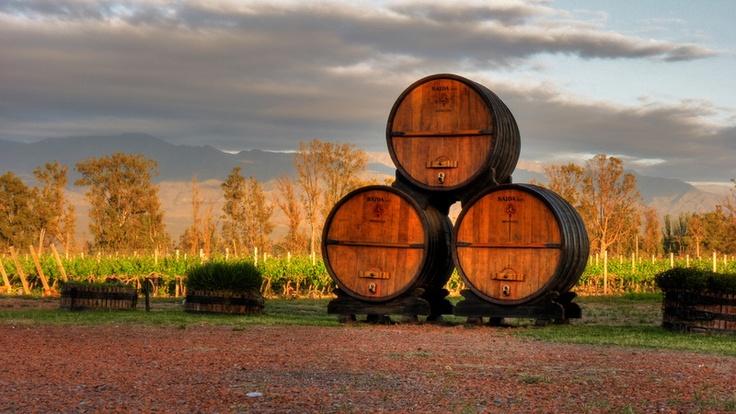 Mendoza, ubicada en el medio-oeste de la República Argentina y al pie de la Cordillera de los Andes, es la ciudad más importante de la Región de Cuyo. Con 1,6 millones de habitantes, es la cuarta ciudad más grande del país. Su clima excepcional permite que maduren sus mejores uvas, la base de sus excelentes vinos.