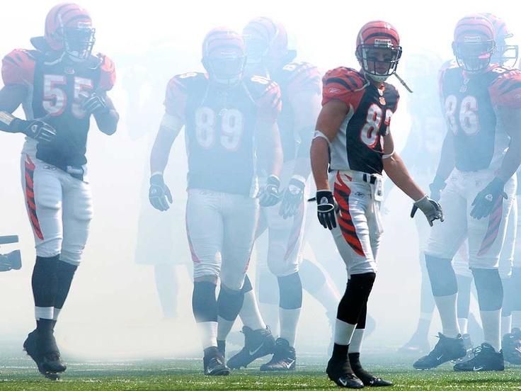 Gotta love smoke effect!!!!: Cincinnati Bengal, Nfl Forever, View, Babes