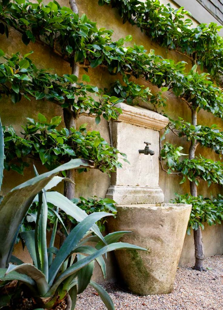 Formal Garden design, with Limestone Fountain water feature, climbing fig and Gravel. By landscape designer Brian Bieder.