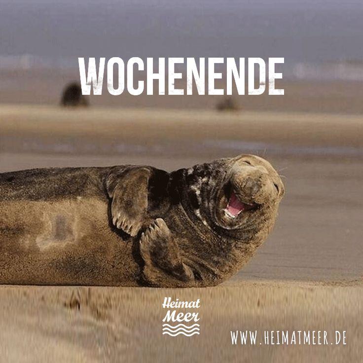 Wochenende! Ab ans Meer! >>