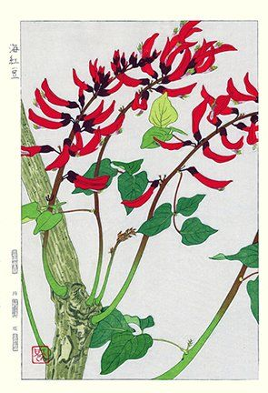 Artist: Teru Kuzuhara. Keywords: flower floral modern contemporary style woodblock woodcut print picture hanga japan japanese orient oriental asia asian art readercollection.com cockspur coraltree