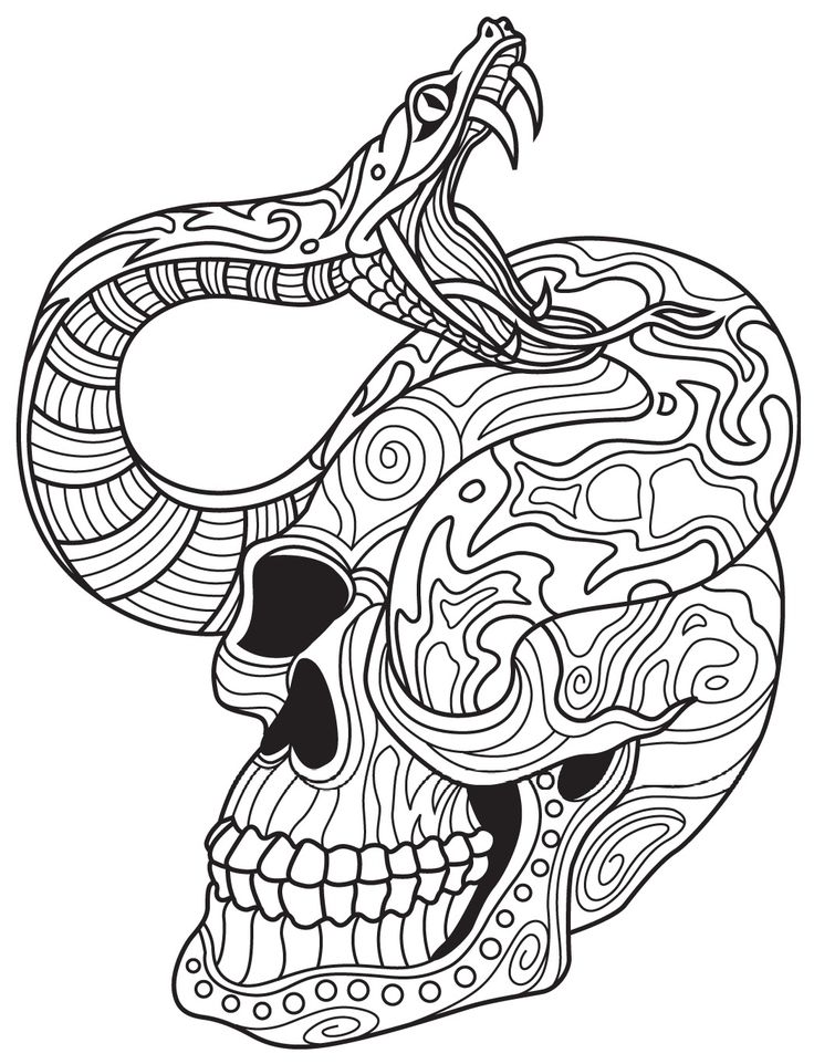 snake and skull colorish coloring book app for adults