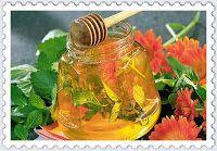 Kouzlo domova: Mátový a meduňkový med