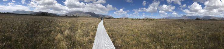 Taken 8 months ago in Southwest National Park Tasmania Australia [OC] [15561  3447]
