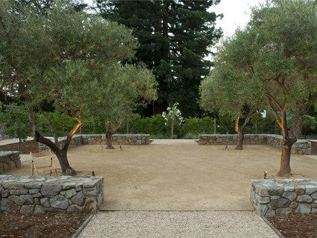 decomposed granite. fruitless olive trees. stone walls.