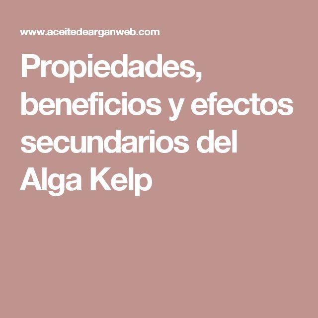 Propiedades, beneficios y efectos secundarios del Alga Kelp