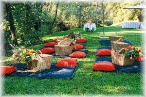 You have lots of options with the Picnic Wedding. As mentioned earlier, you could use Traditional Tables and Chairs or spice it up a little and use Picnic Benches or even Picnic Blankets!