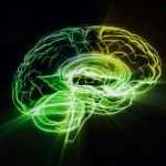 How to improve cognitive function of #brain using #neuroplasticity?