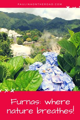 Discover Furnas, Sao Miguel, Azores and its thermal waters and volcanoes. They have a relaxing effect.