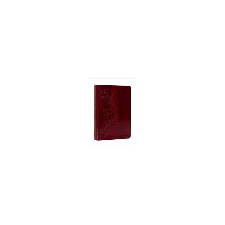 New Inductive Study Bible : New American Standard Bible, Burgundy, Milano Softone (Paperback)