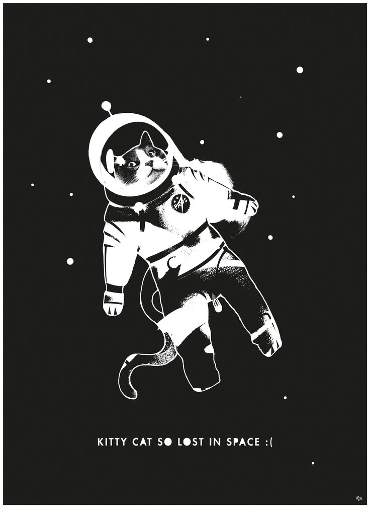 Kitty Cat so lost in space :(