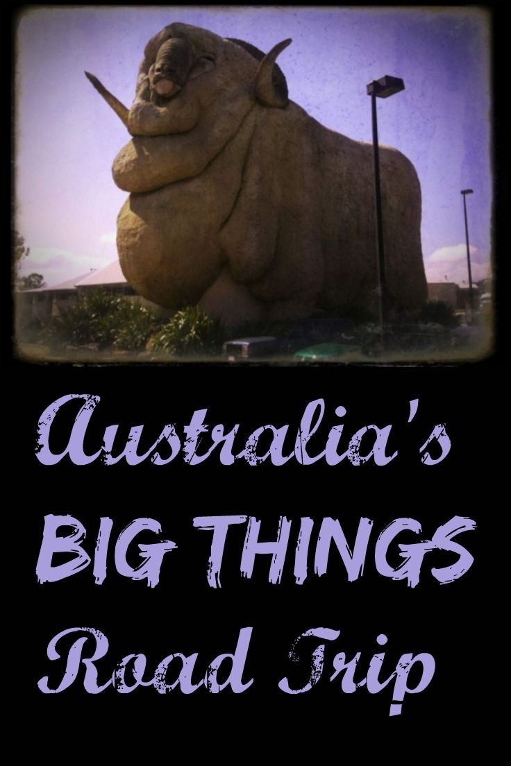 The Big Merino, The Big Pineapple, the Big... chook? Some of the Big Things you can see on an Australian Road Trip