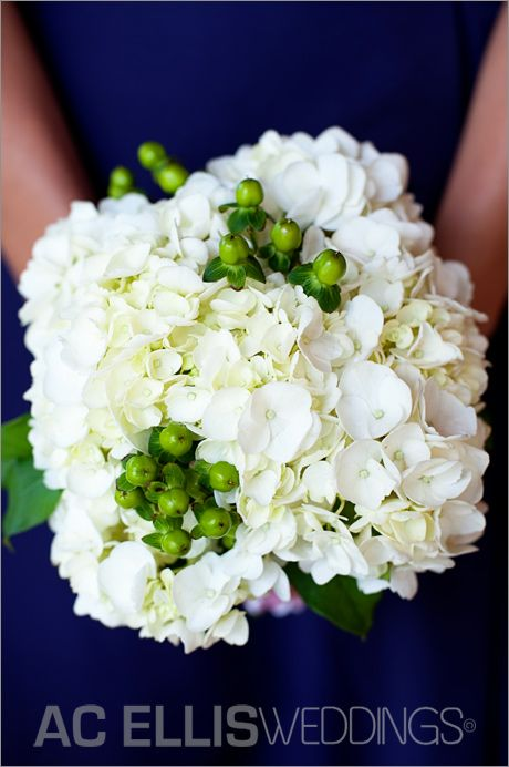 Bridesmaids: White hydrangea with green coffee berries