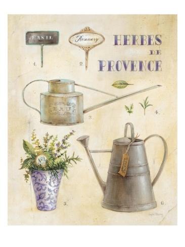 Herbes de Provence – Angela Staehling