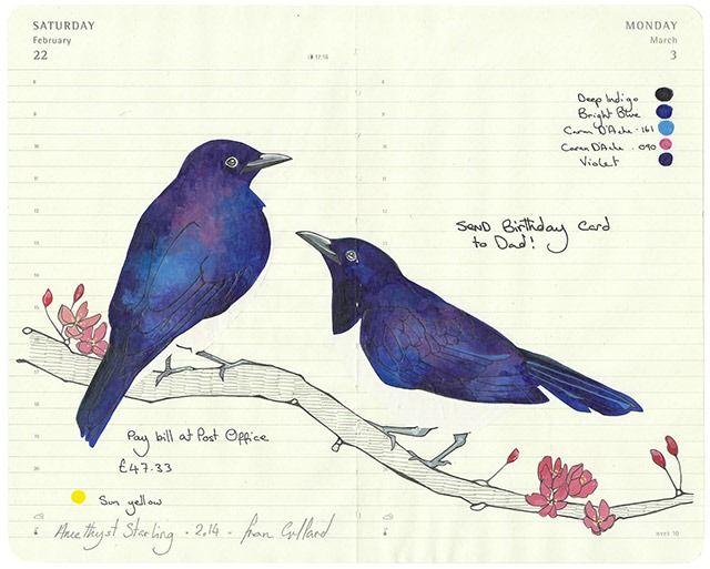 Elegant Bird Illustrations in Moleskine Diaries by Fran Giffard » Design You Trust. Design, Culture & Society.