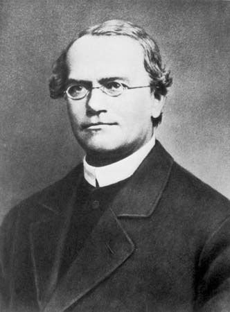 Gregor Mendel 1866 (published a paper on Genetic theory)