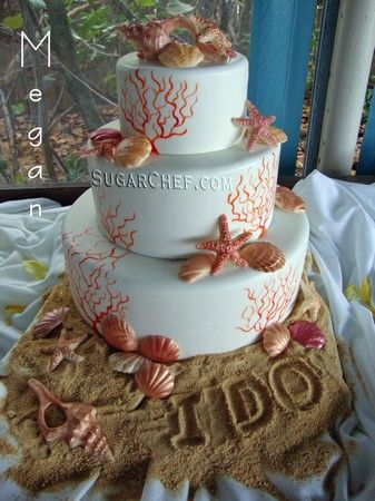 want this cake with aqua details, the same place that made nathan's birthday cake!!