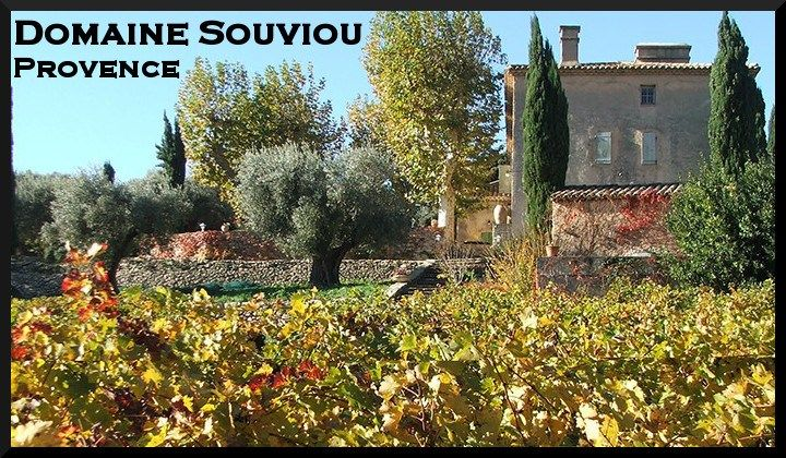 domaine-souviou-outside-view-vineyard-provence-2