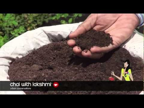 how to grow organic vegetables at home in tamil