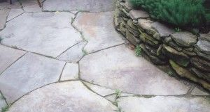 Ask Devin - what to do about Weeds between pavers, weeds between flagstone joints I've seen some bad advice online about how to remove weeds from in between patio pavers and flagstones. One piece of bad advice, that comes up way too often is this: lift up the bricks/stones, lay a piece of plastic(!), re-lay the stones. Terrible, terrible idea. Totally …