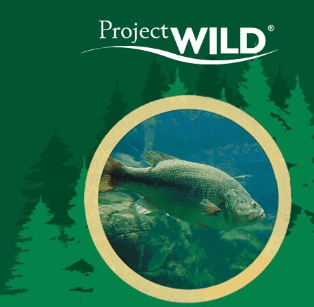 Project WILD is one of the most widely-used conservation and environmental education programs among educators of students in kindergarten through high school. It is based on the premise that young people and educators have a vital interest in learning about our natural world.