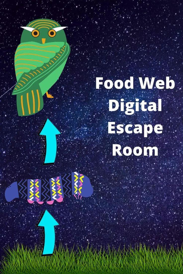 Digital escape room food webs video video in 2020