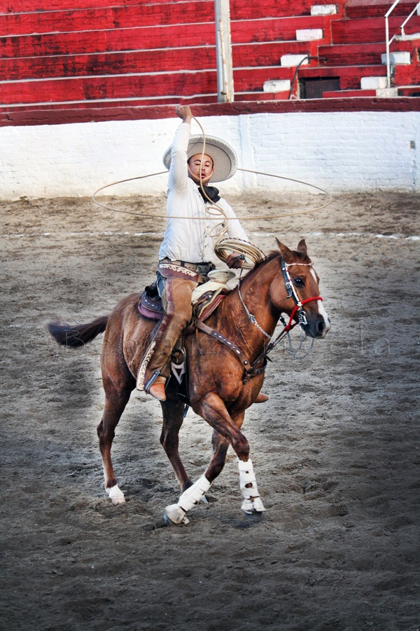 102 Best Images About Charros Y Caballos On Pinterest
