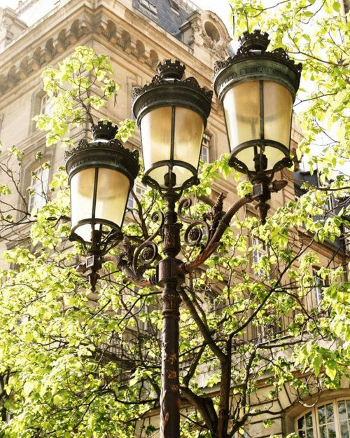 Photography Paris France - Lights of Paris. I appreciate a little extra detail, wish more neighborhoods used these.