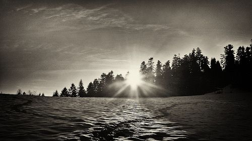photo nature | free download photobank of black and white photos