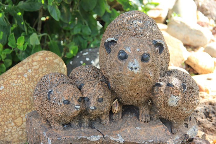 The Hyraxes Family by Charissa Lotter (de Scande) on 500px