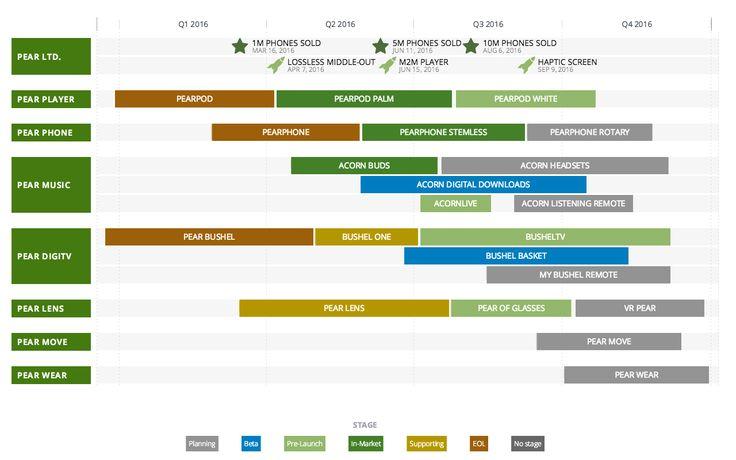 Custom Roadmap Software  Information Design    Template