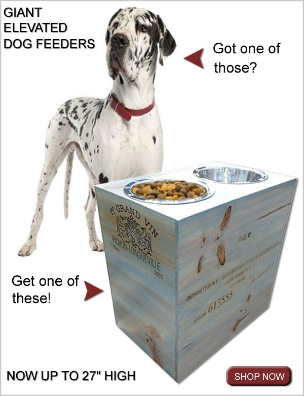 Elevated dog feeders & dog bowls for giant dog breeds such ...