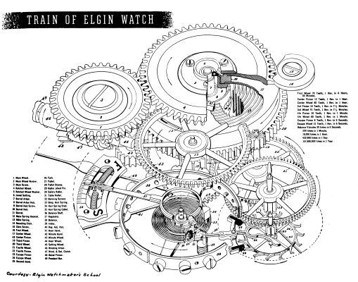 Waltham Watch Movement Diagram Electrical Wiring Diagram House