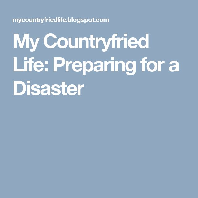 My Countryfried Life: Preparing for a Disaster
