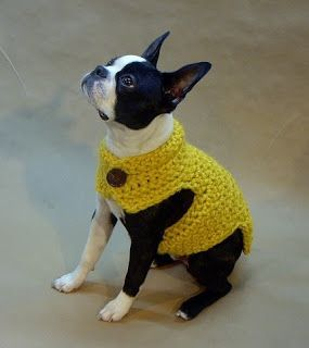 11 Seconds: Crochet Clothes for.... Dogs
