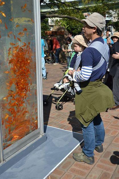 Los peces en Japón utilizan las cabinas de teléfonos