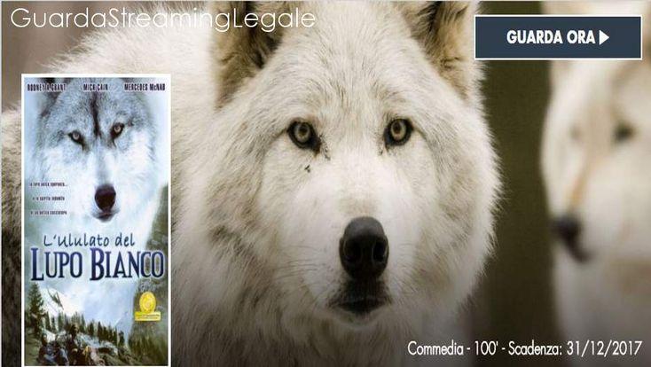 L'ululato del Lupo Bianco - Film Streaming Completo HD