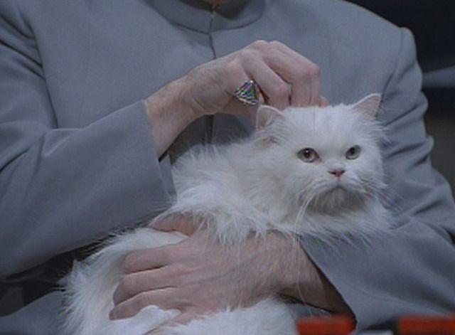 Disney Evil White Cat