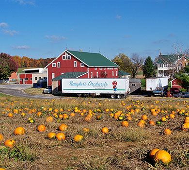 Baugher's Orchards and Farms in Westminster, Maryland features fresh fruit gift baskets, pumpkin patch, farm market, petting zoo and more.