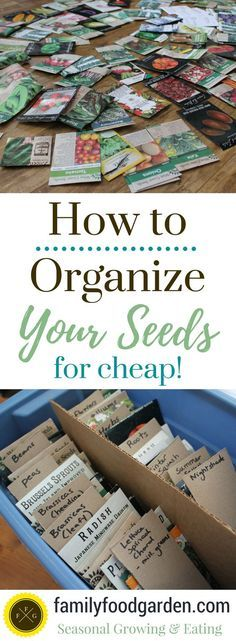 How to Cheaply Organize your Seeds