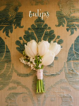 The house party will carry petite nosegays of tulips, seeded eucalyptus, and Queen Anne's lace wrapped in raffia with the stems showing.