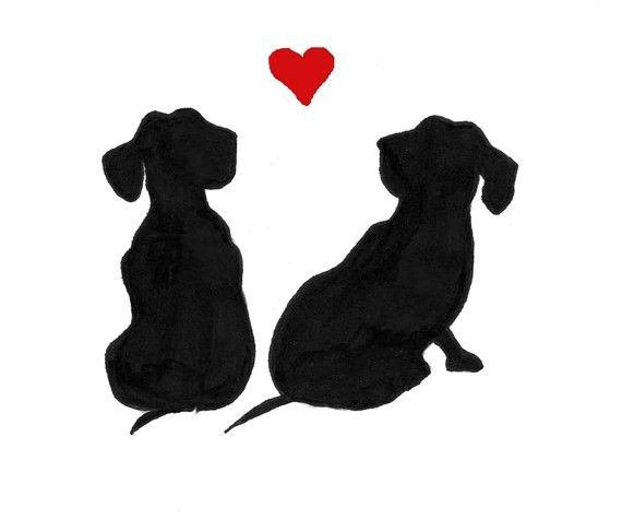 dachshund love - This is Mia and Marley. They would be lost without each other.