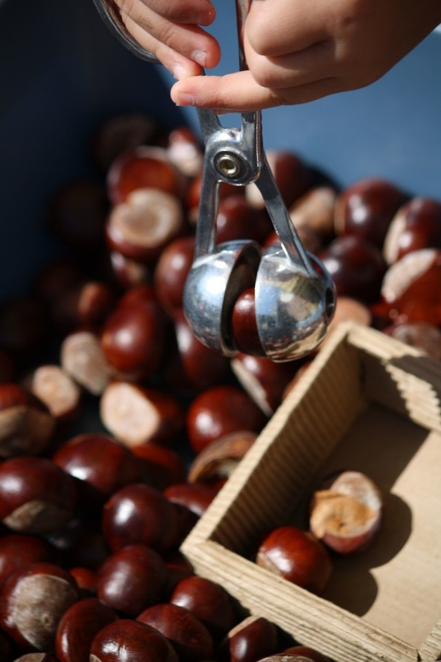 sensory play with chestnuts - Outdoor Play Party Linky