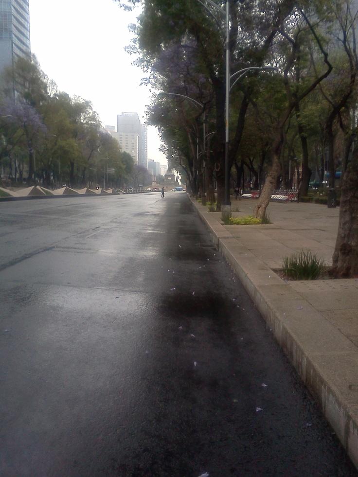 Lluvia (Reforma)