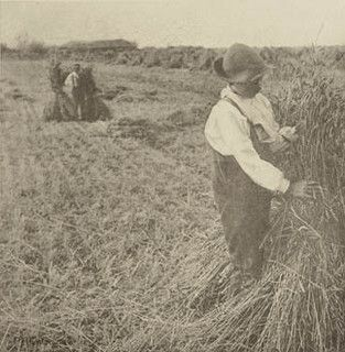 Peter Henry Emerson, Shocking Corn (Norfolk Marshes), 1888, collection of Peter Montgomery, Flickr -