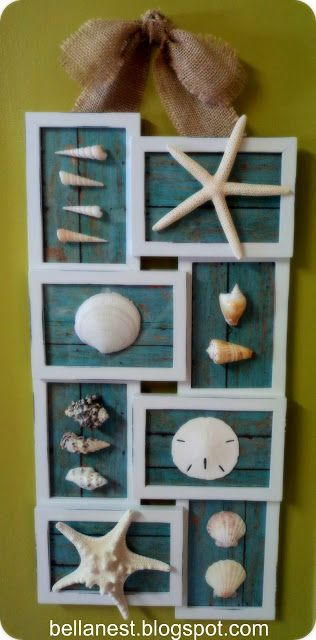 Bella Nest: Show off your seashells!