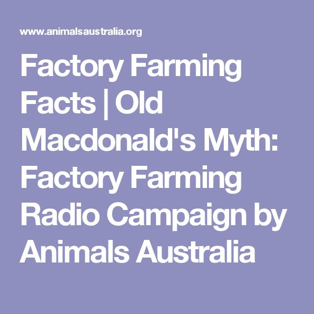 Factory Farming Facts | Old Macdonald's Myth: Factory Farming Radio Campaign by Animals Australia