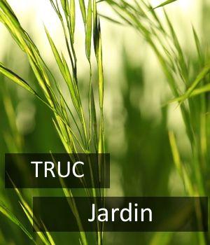 10 trucs pour enlever les mauvaises herbes
