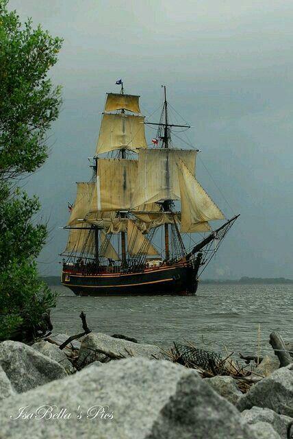 ~ † Pirates A Board This Ship † ~